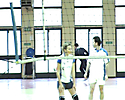 Volleyball 2006