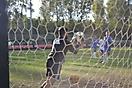 football-2014-70